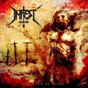 INFEST - CD -  Addicted To Flesh