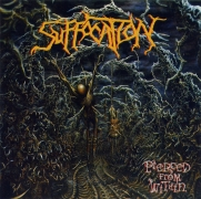 "SUFFOCATION - 12"" LP - Pierced From Within (purple Vinyl)"