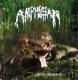 AMPHIBIAN - CD - Lust of the Bufo`s