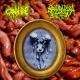 CANNIBE / BBARBAPAPPA BUTCHERY - split CD -