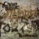 CHAMBER OF TORTURE - CD - Necrodomain