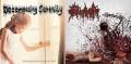 DECOMPOSING SERENITY / PROCTALGIA - split CD -