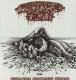 DISGORGED FOETUS - Cardboard MCD - Putrefying Gangrenous Abscess