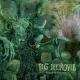 PIG DESTROYER - 12''EP - Mass & Volume (green Vinyl)