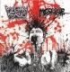 PULMONARY FIBROSIS / MESRINE - split 7'' EP -