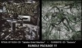 RITUAL OF FLESH + GUINEAPIG -CD Bundle-