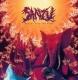 SANZU - CD - Heavy Over The Home