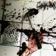 SPLATTERED MERMAIDS -CD- Stench of Flesh